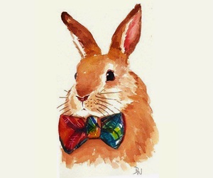 rabbit and my favourite animal image