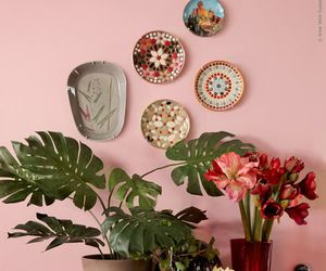 interior design, pink, and plants image