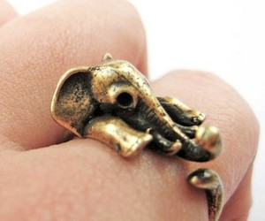 ring, elephant, and jewelry image