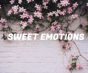 emotions, flor, and flowers image
