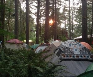 camping, nature, and tree image