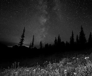 landscape, night, and stars image