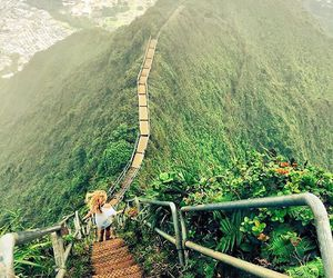 nature and hawaii image