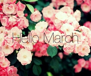 hello, march, and spring image