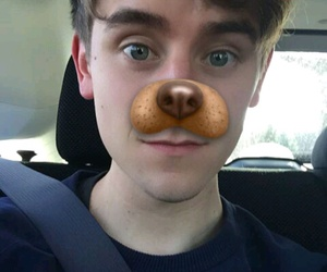 dog, connor franta, and cute image