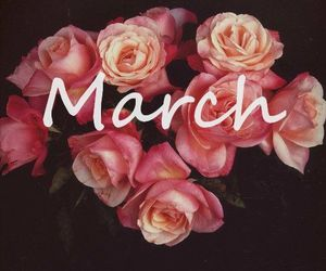 march, flowers, and pink image