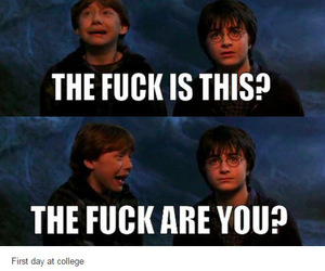 funny, harry potter, and jokes image
