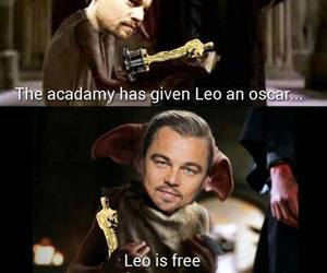 oscar, funny, and Leo image