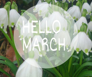 flowers, march, and quotes image