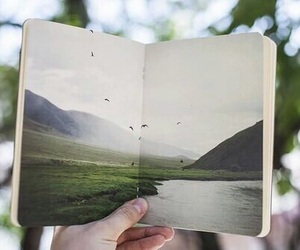 nature, book, and green image