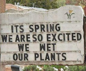 funny, spring, and sign image