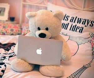 apple, bear, and laptop image