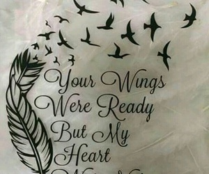 wings, bird, and heart image
