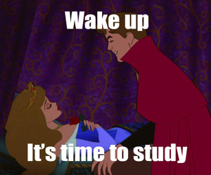 exams, finals, and study image