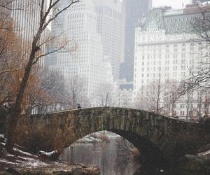 city, bridge, and new york image