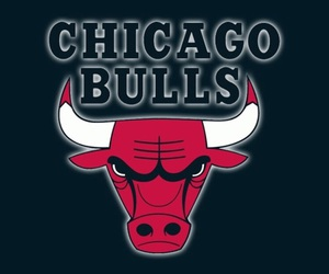 chicago bulls, bulls, and Basketball image