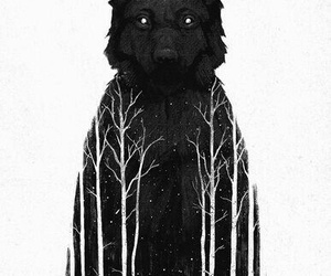 wolf, art, and forest image