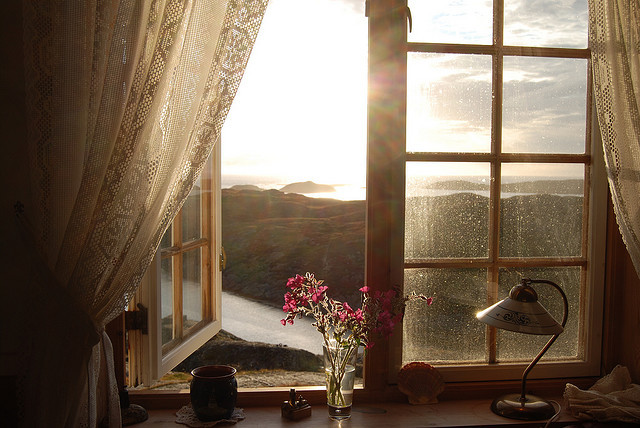 window, flowers, and sun image
