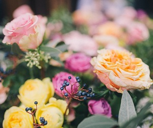 flowers, blossom, and spring image