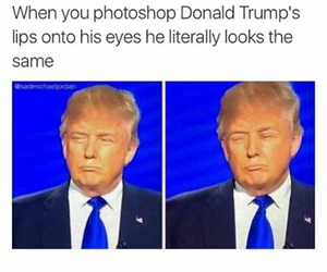 funny, donald trump, and lol image