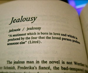jealousy, quotes, and text image