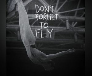 fly, gymnastics, and quote image
