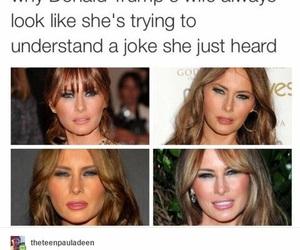 funny, haha, and lol image