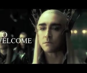 elf, king, and the hobbit image