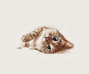 cat, wallpaper, and art image