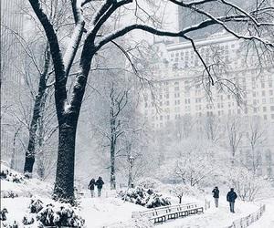 new york, nyc, and winter image
