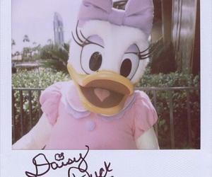 disney, daisy duck, and daisy image