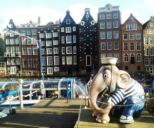 amsterdam, happiness, and enjoy image
