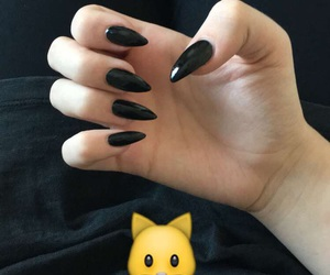 black, cat, and claws image