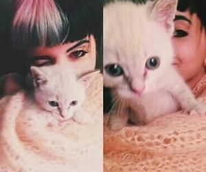 cat, melanie martinez, and singer image