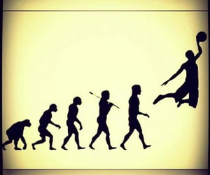 Basketball, evolution, and love image