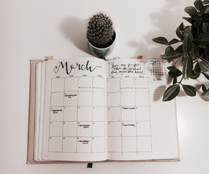 notebook, cactus, and march image