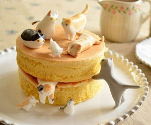 cat, cake, and food image