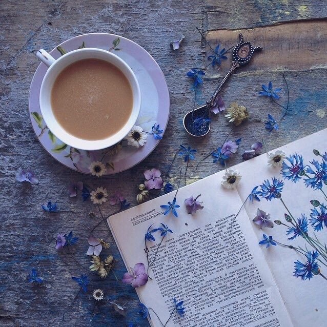 books, dainty, and flowers image