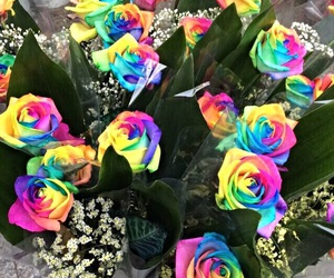flowers, pretty, and roses image