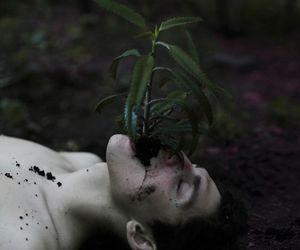 plants, boy, and dark image