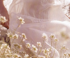 flowers, white, and dress image