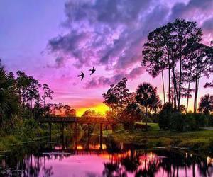 sunset, nature, and purple image