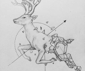 aesthetic, art, and deer image