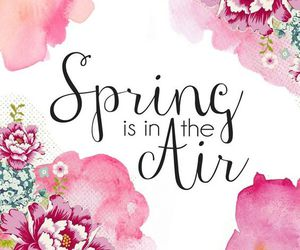 spring, flowers, and air image