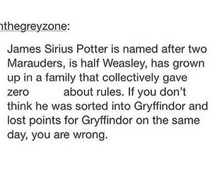 gryffindor, harry potter, and james image