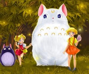 anime, sailor moon, and totoro image
