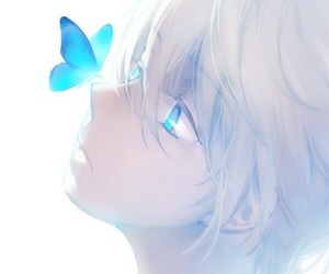 anime, butterfly, and anime boy image