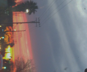 colors, sunset, and trees image