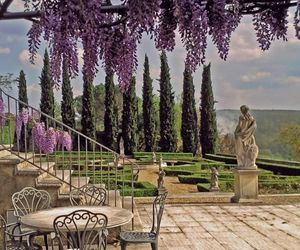 garden, italy, and wisteria image
