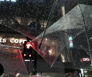 rain, umbrella, and theme image